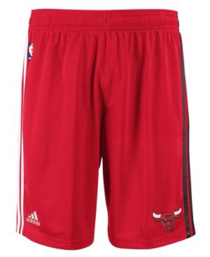 Bulls shorts red black